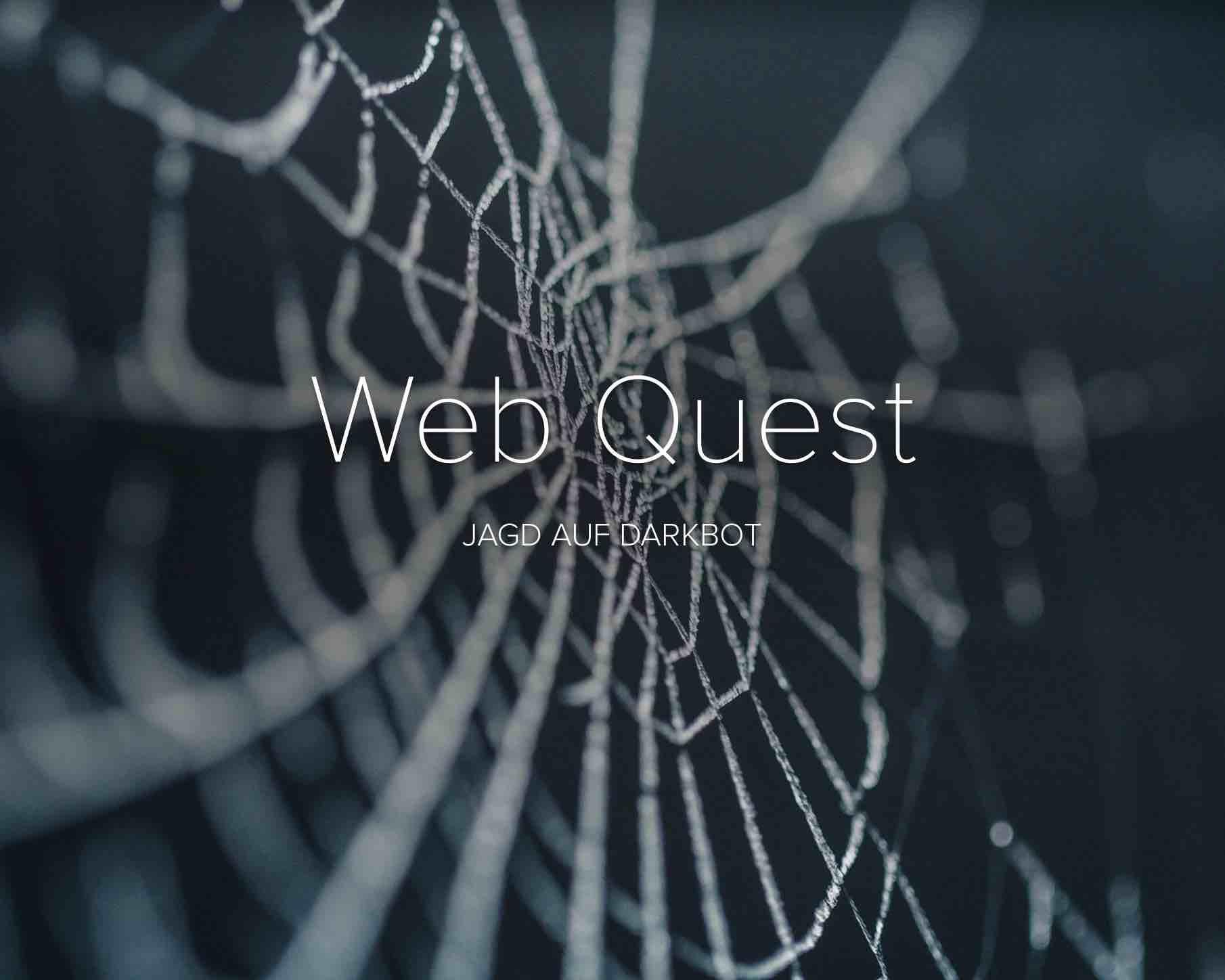 Spinnennetz vor schwarzem Hintergrund
